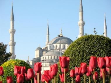 Истанбул - фестивала на лалето